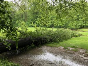 GCF Unwetterschäden 2019 - 7